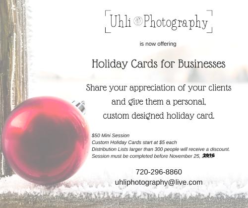 holiday sessions colorado pet photographer uhli photography