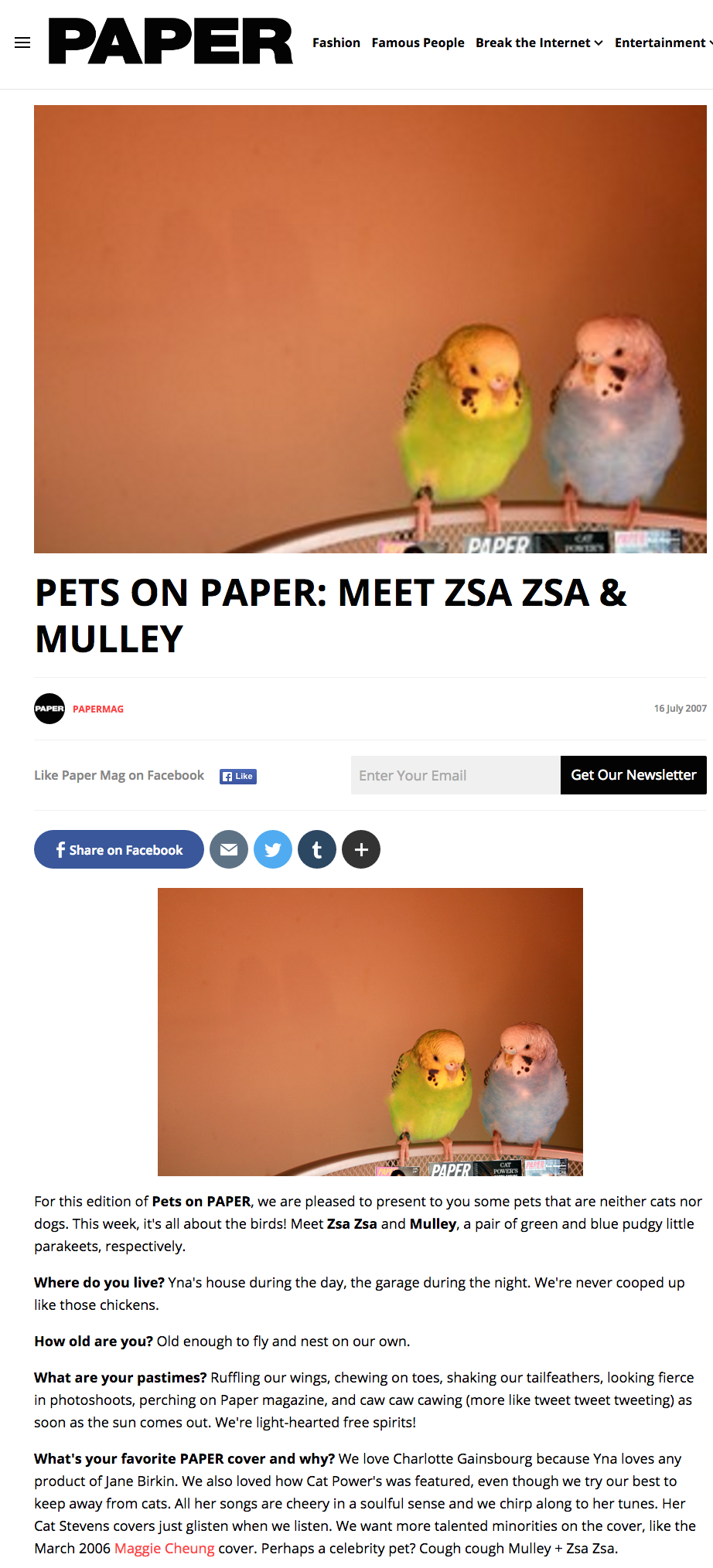 Pets on Paper: Meet Zsa Zsa & Mulley