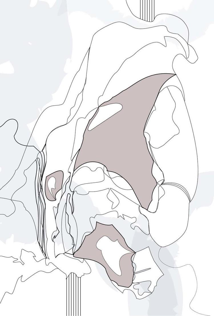 Illustrator+Line+Drawing.jpg