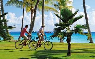 gie-005-garden-bicycles_admin_thumbnail.jpg