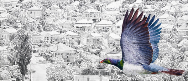 There is No Planet B Kereru over Devonport Framed $525 Unframed $359 Framed size 830mm w x 480mm h