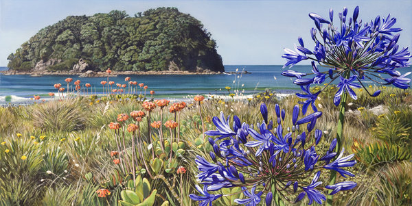 Agapanthus and Motuotou Island Mount Maunganui $359 Measures 650mm w x 430mm h.  $459 Measures 780mm w x 435mm h
