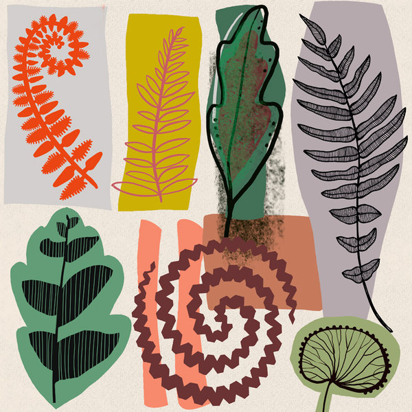 Fern Forms $220 Unframed 350 mm square
