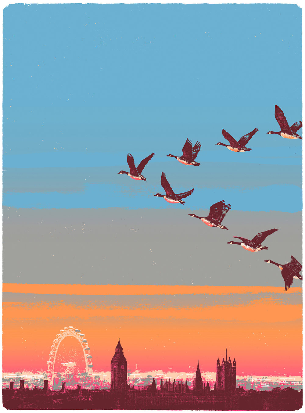 Migration Over Westminster.