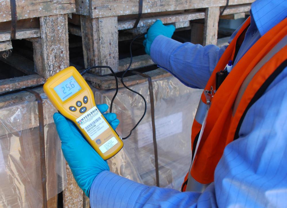 Mould Worx (Mould, Mold, HVAC, Duct Remediation) 1033.JPG