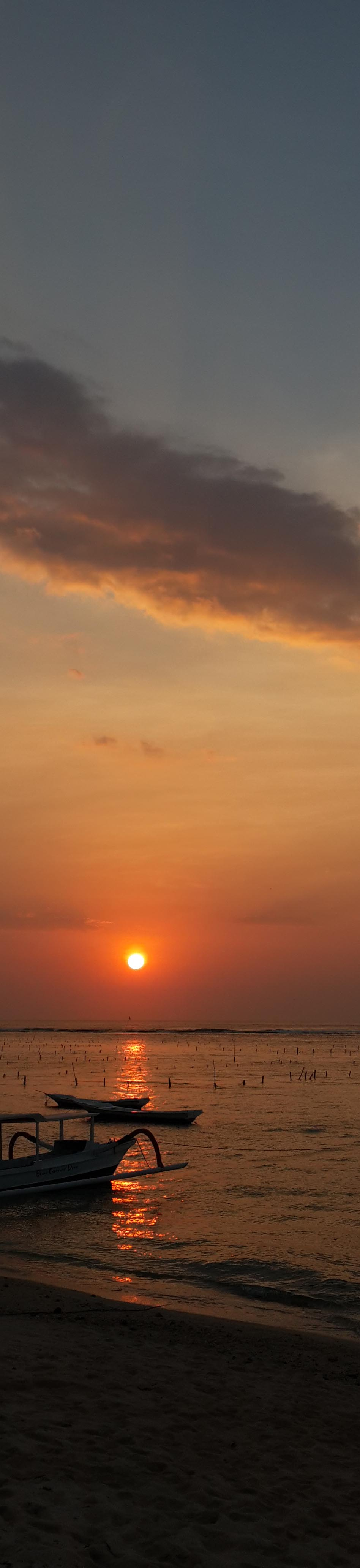 vertical sunset.jpg
