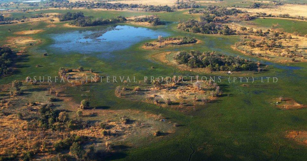 Okavango Delta 001ss.jpg