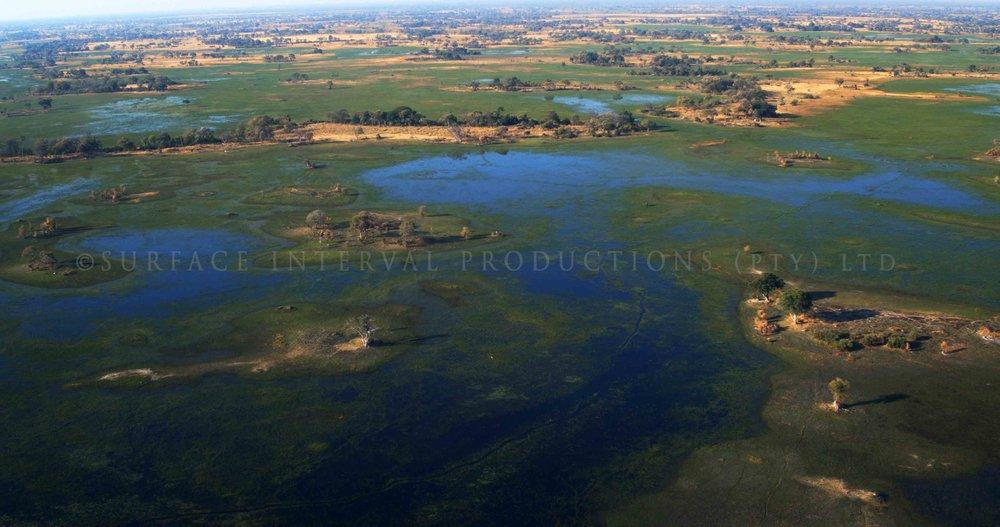 Okavango Delta 003s.jpg