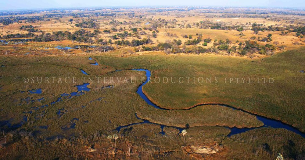 Okavango Delta 004ss.jpg