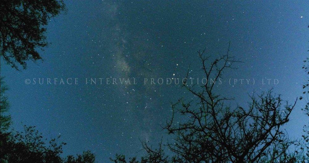 Stars 001ss.jpg