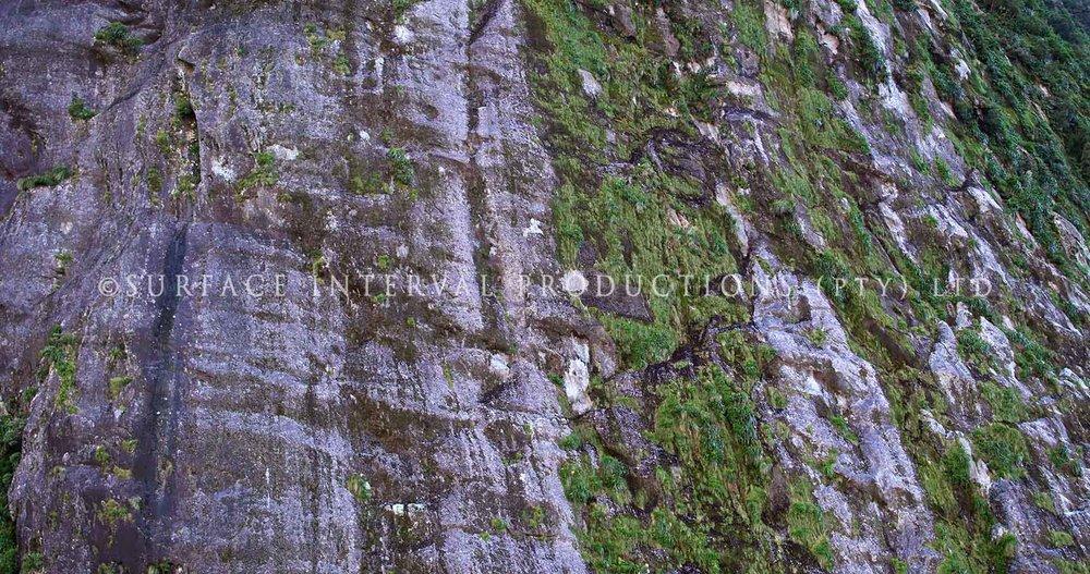 Milford Sound 03.jpg