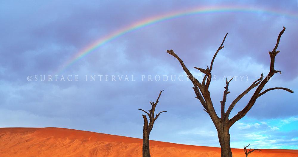 Namib Desert 21.jpg