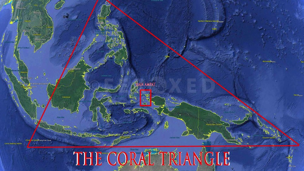 Triangle 03.jpg