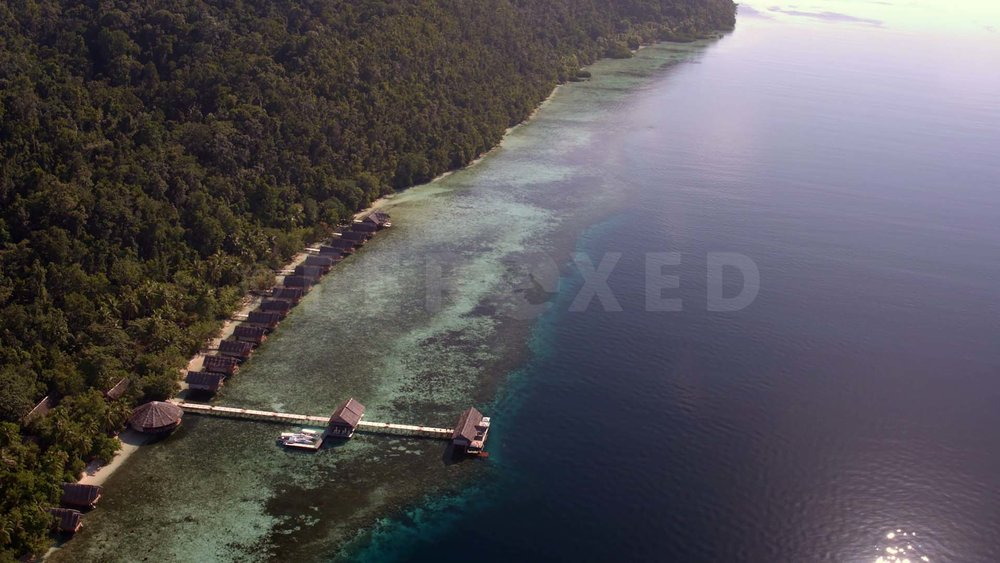 Papua 03.jpg