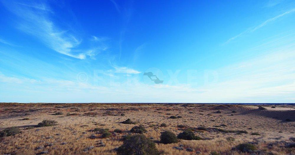 Landscape Kgahagadi 2018 b_1.287.1.jpg