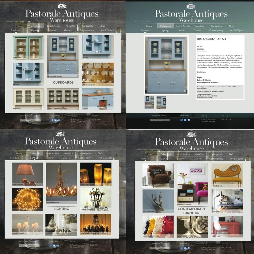 NEW websitev9.jpg