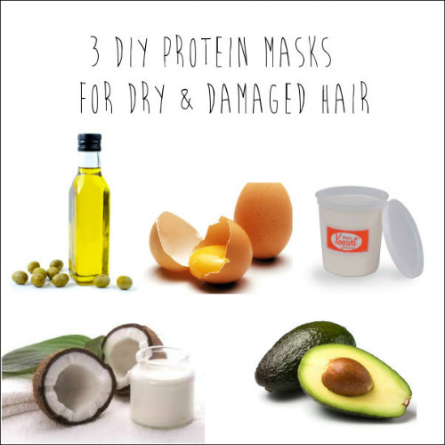 protein500.jpg