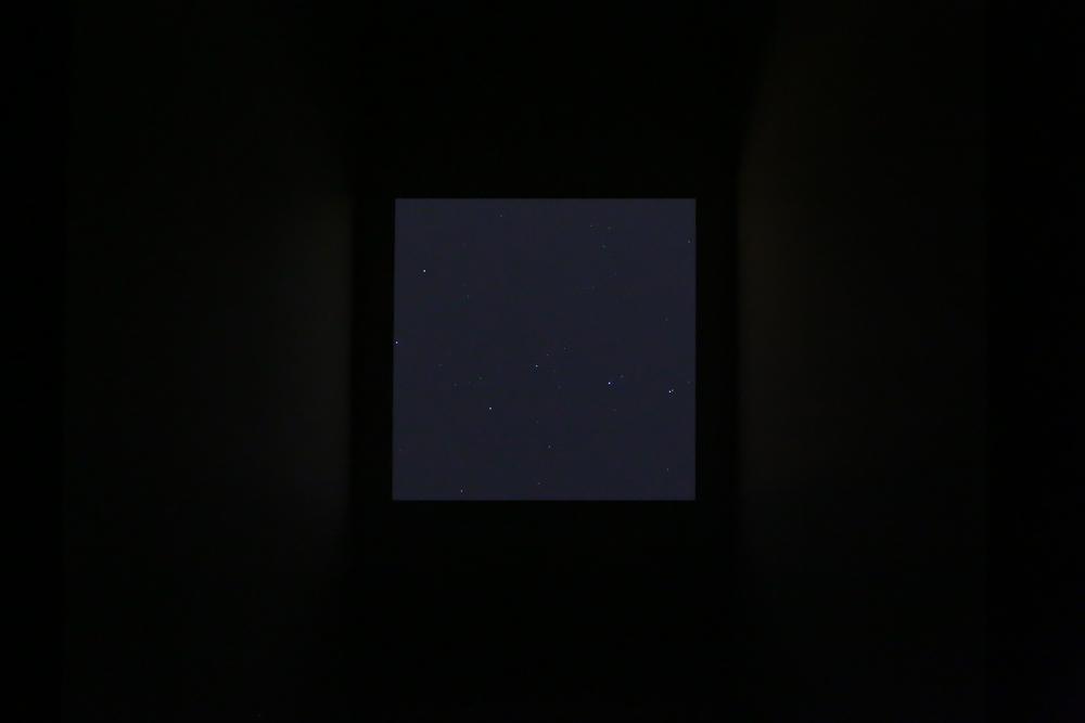 U37A4136.jpg