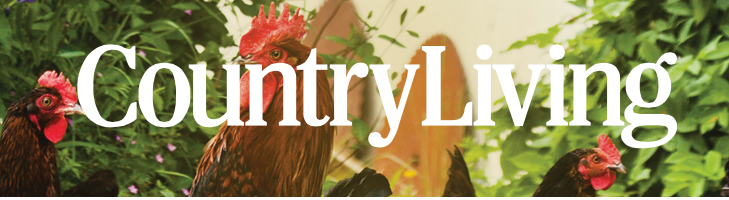 country living mag logo.png