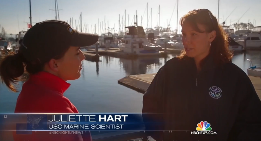 recent interview on nbc nightly news. click the image for the link to the story!