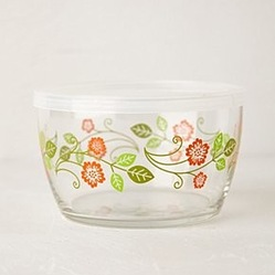 89e12f9e02d4740e_5055-w249-h249-b0-p0--eclectic-food-containers-and-storage.jpg