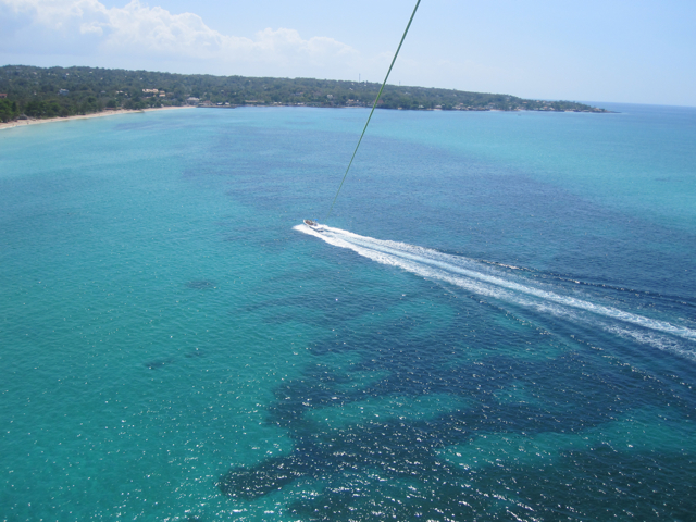 The view from parasailing, Jamaica 2011.