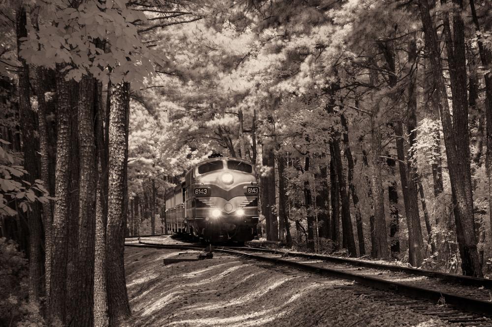 train-stone_mtn8498.jpg