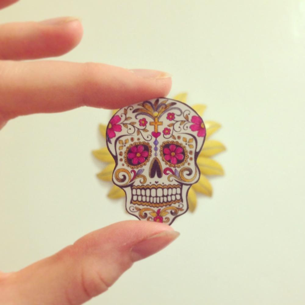 my baby skulls.JPG
