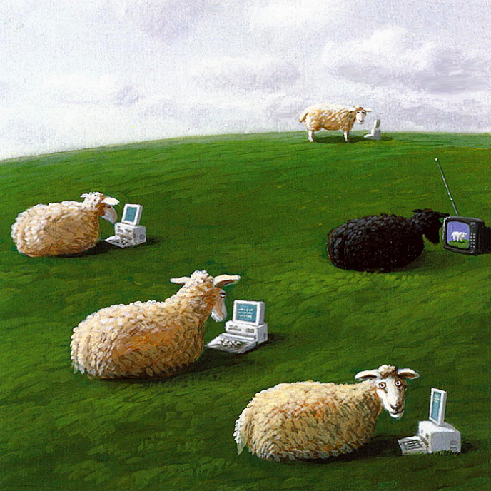 Michael Sowa, Sheep with Laptops