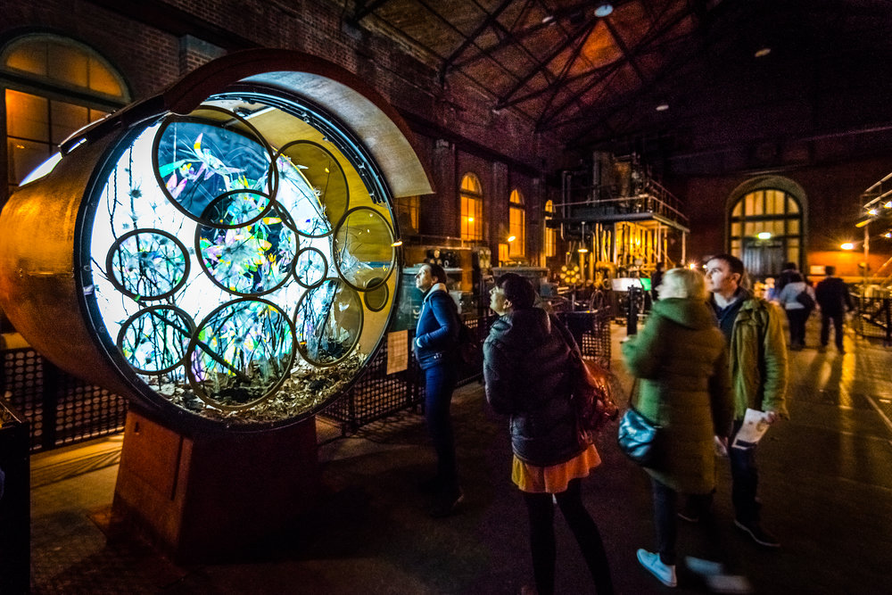 stewiedonn HR ScienceWorks-AstroLight-Festival-2016-64.jpg