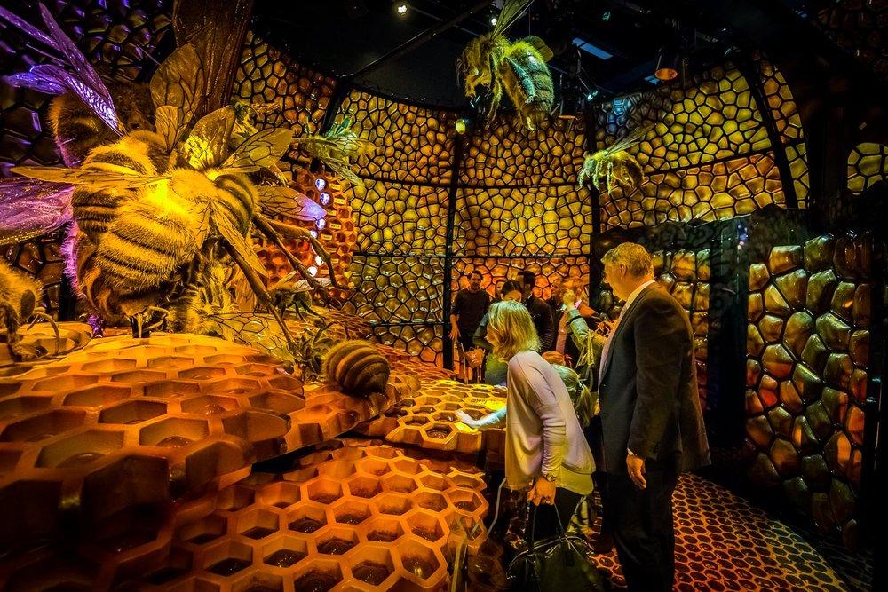 stewiedonn SquSpc MelbourneMuseum-BugLabLaunch-169.jpg