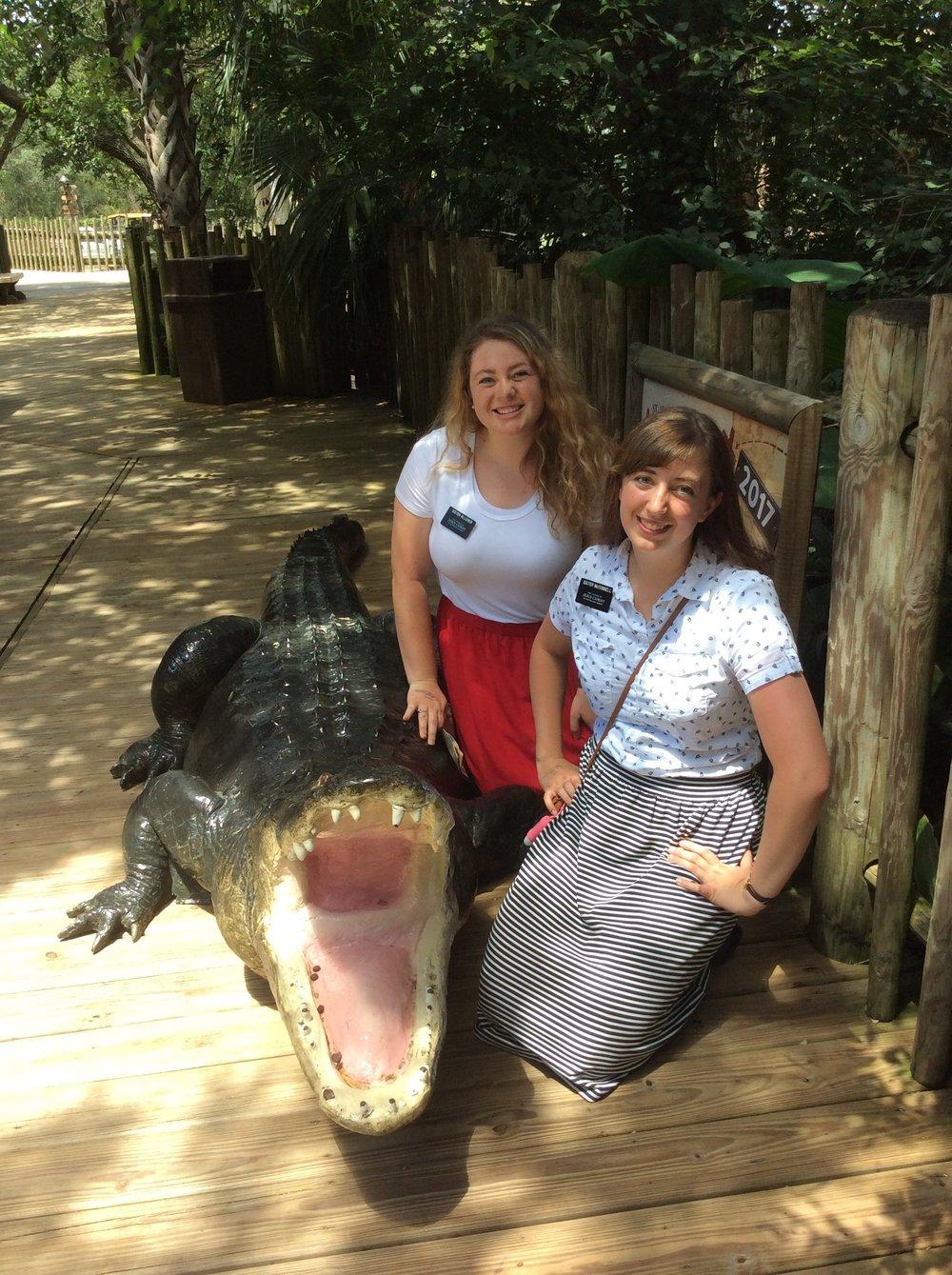More Alligator Farm