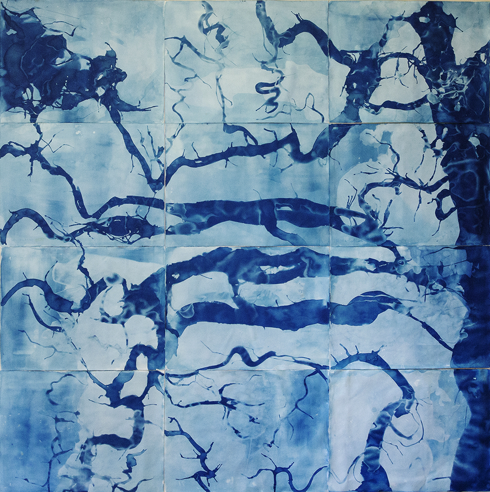 "Marsh Map II, Altamaha Sound to Doboy Sound, Georgia 2019  (cyanotype on watercolor paper 96""x 96"")"