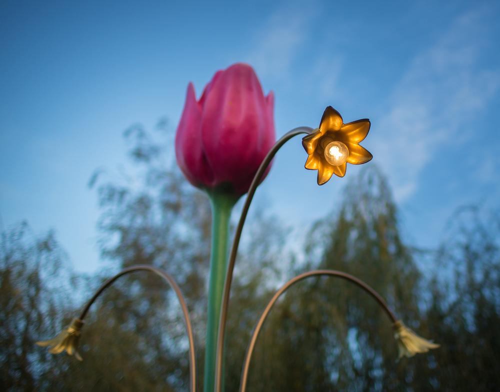 FOSFOR Flowerbin-1094.jpg