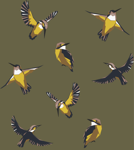 EVA WILLEMS - birds&bees7.png