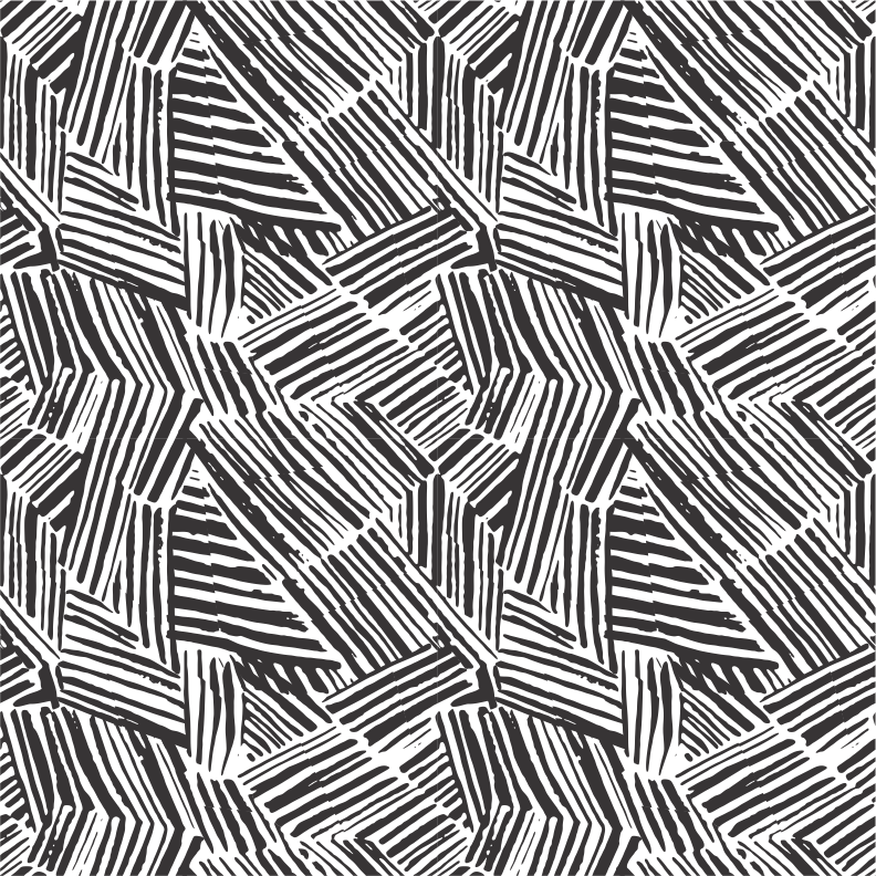 EVA WILLEMS - zebra pattern.png