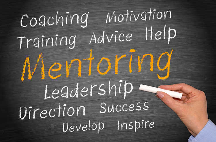 Mentorship opportunities