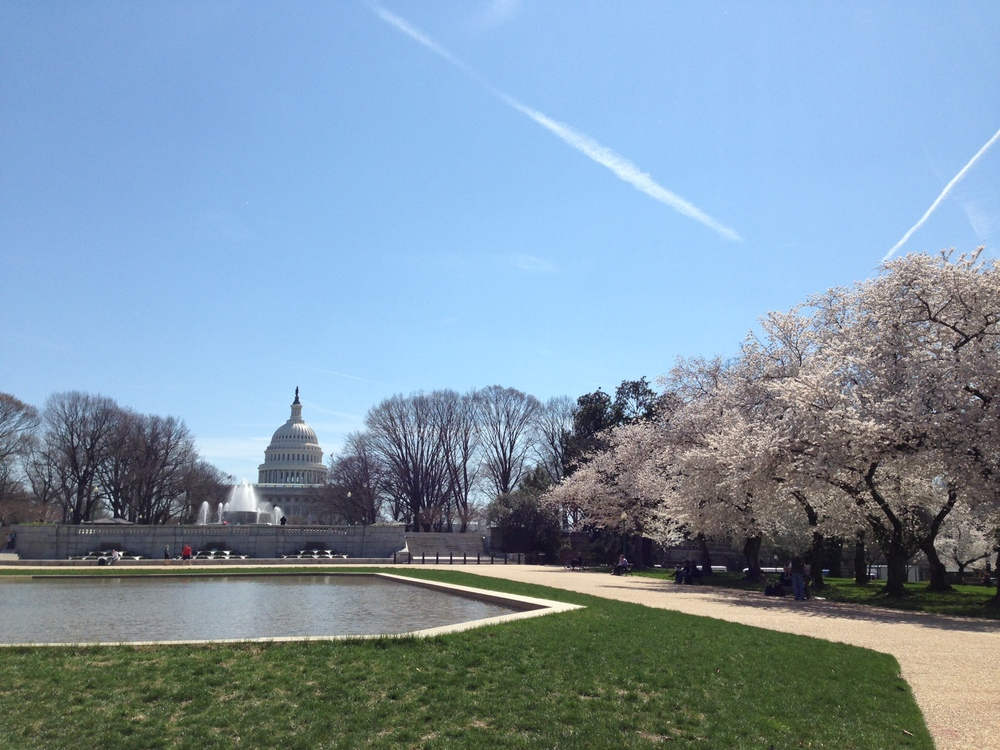 Will springtime inspire comprehensive immigration reform?