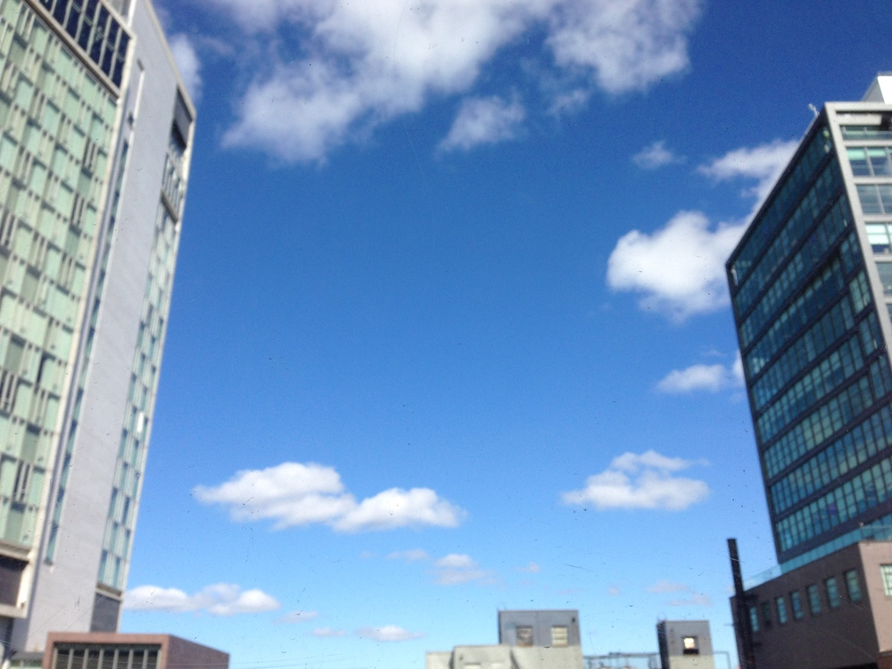 Blue skies and warm weather outside our office today. Summertime's here for good, we hope.