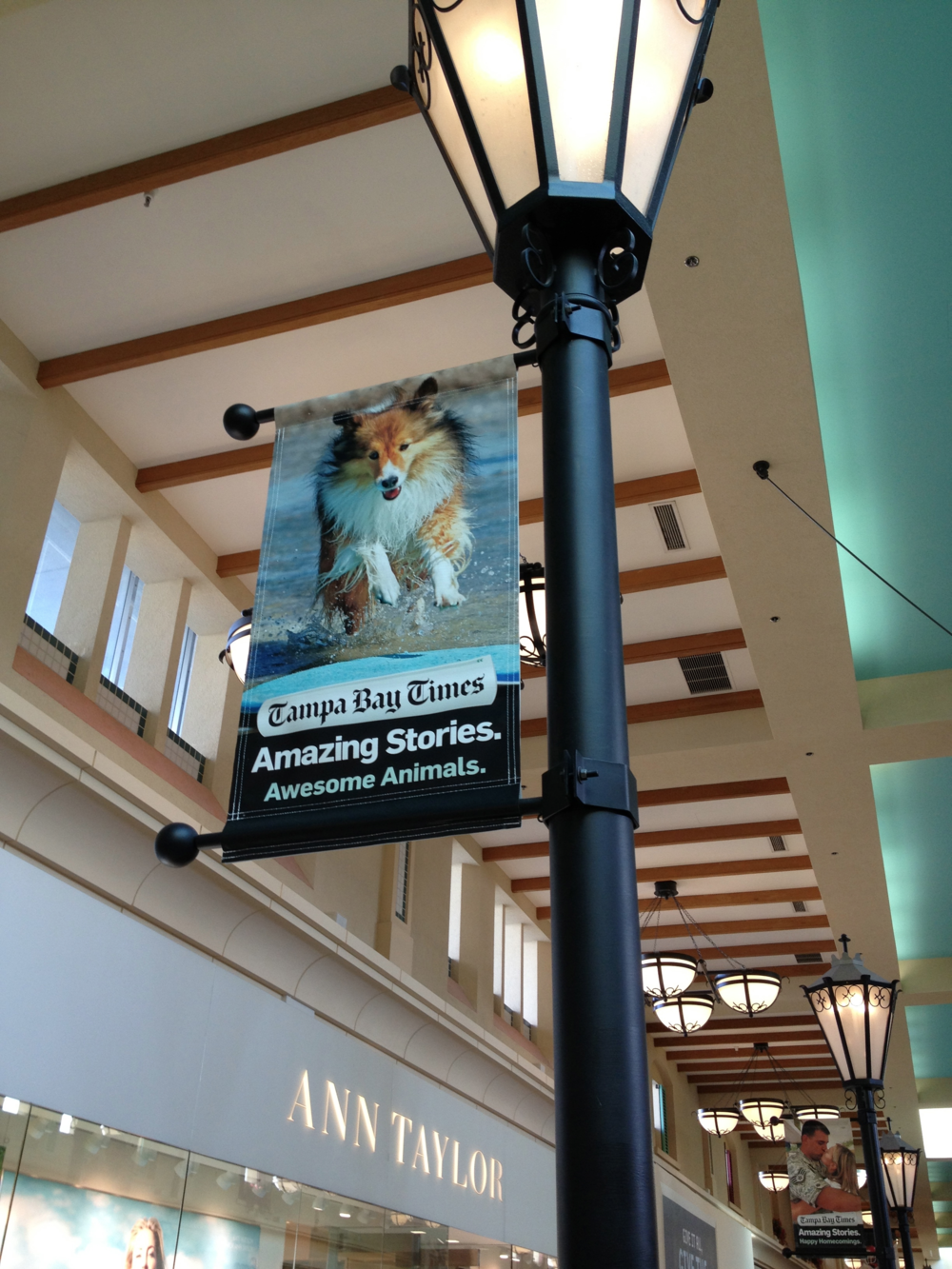 TWIG'S banner in WestShore Plaza Mall, Tampa