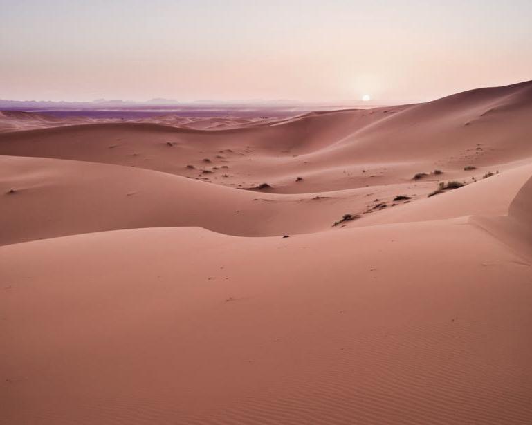 Argelia desde Marruecos. Sahara, 2014
