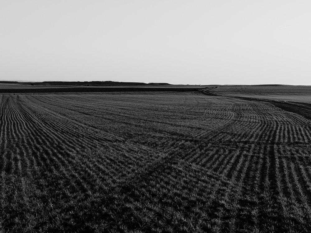 Algún punto próximo a Burgos, 2018.