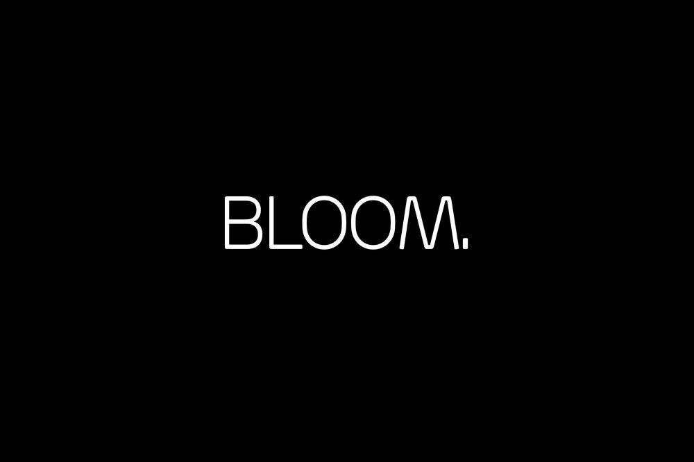 bloom slide_13.jpg
