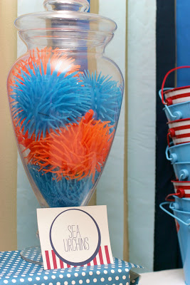 Koosh sea life from Wonder Kids