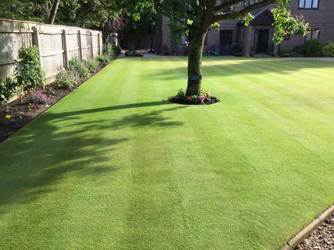 tidswell-britains-best-lawnpg.jpg