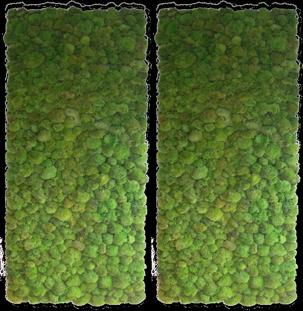 bun-moss-wall_2.png