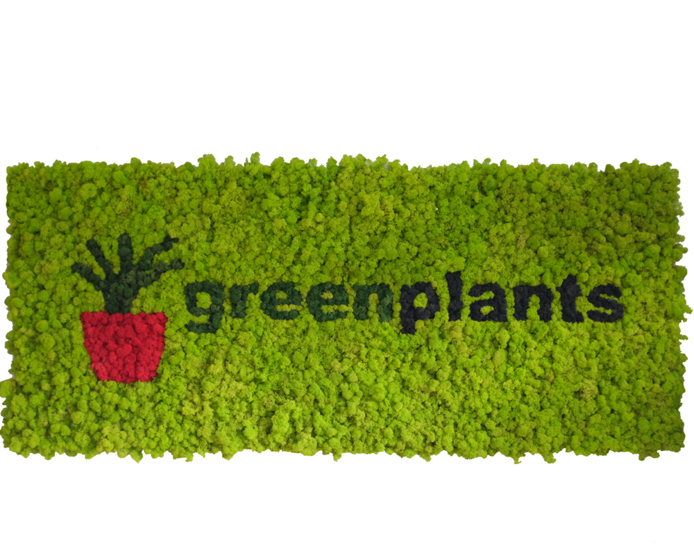 cropped-greenplants-wall1.png