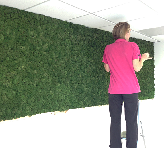 install_moss_wall.png
