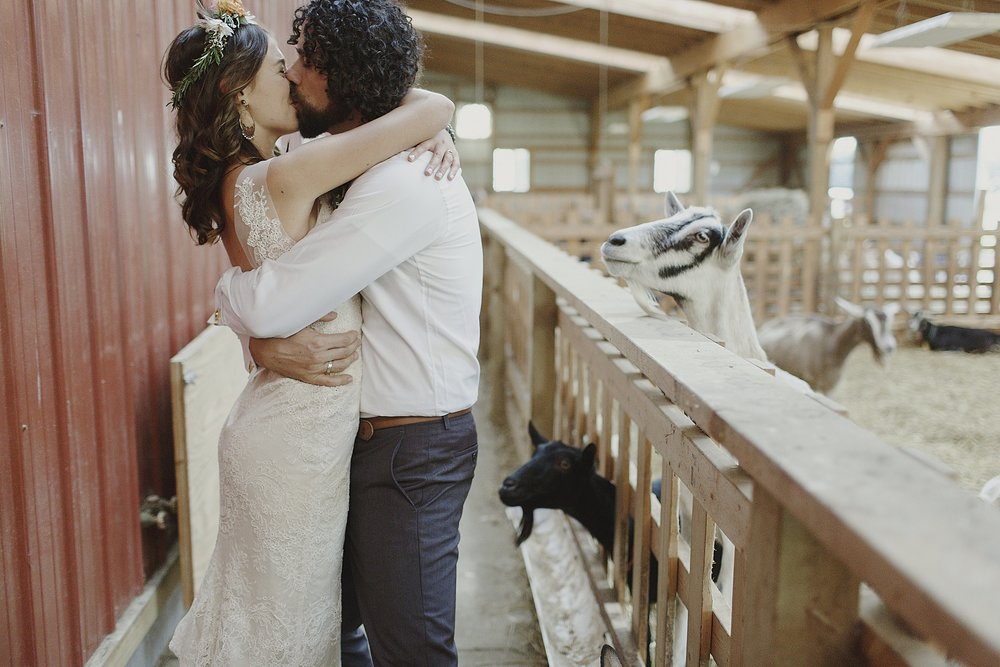 rustic-local-wedding-goats-barn-kiss