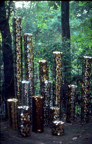 The Plaited Forest cc.jpg